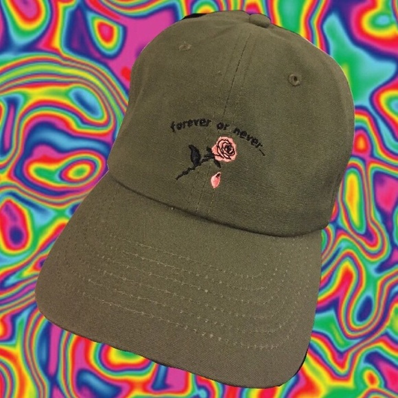 """e5fc9bd9a Zumiez """"forever or never"""" hat"""